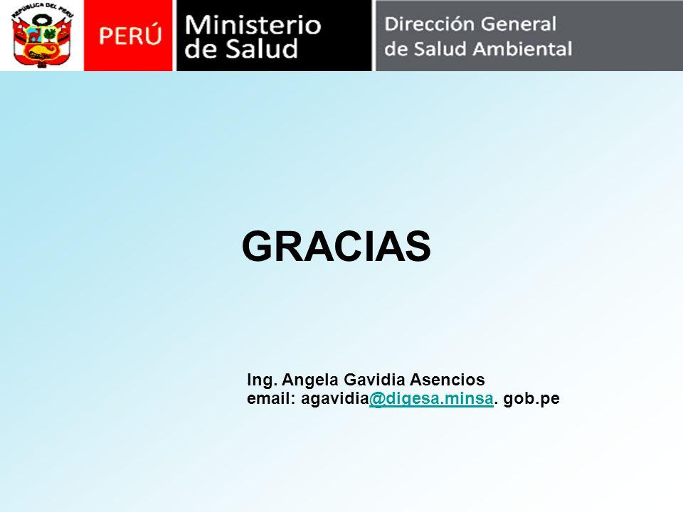 GRACIAS Ing. Angela Gavidia Asencios email: agavidia@digesa.minsa. gob.pe@digesa.minsa