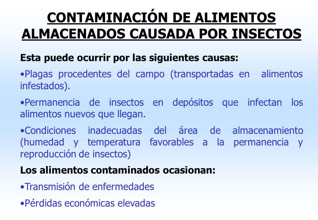 CONTROL DE VECTORES Se clasifican principalmente en insectos y roedores. Estos actúan como vectores mecánicos, biológicos o ambos de organismos patóge