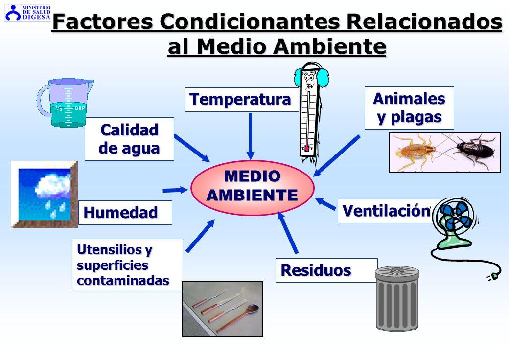 Factores Condicionantes Relacionados al Alimento Riqueza y calidad proteica Presencia de oxígeno Composición del producto Actividad de agua (aw) Acide