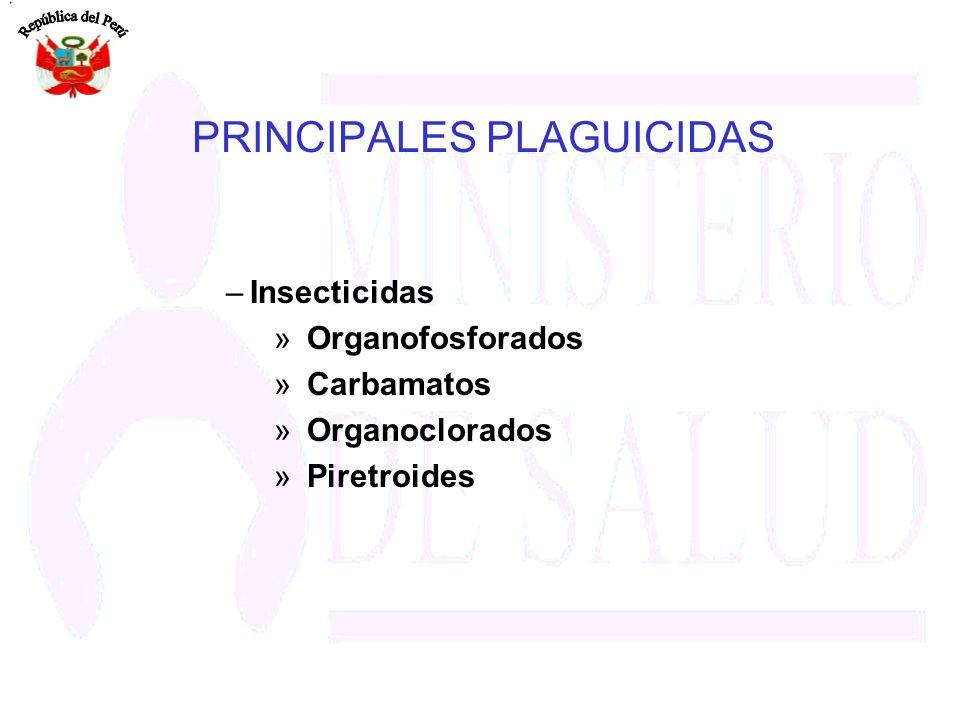 PRINCIPALES PLAGUICIDAS –Insecticidas » Organofosforados » Carbamatos » Organoclorados » Piretroides