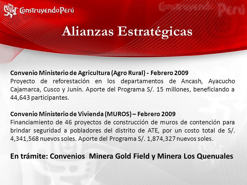 Alianzas Estratégicas Convenio Ministerio de Agricultura (Agro Rural) - Febrero 2009 Proyecto de reforestación en los departamentos de Ancash, Ayacucho Cajamarca, Cusco y Junín.