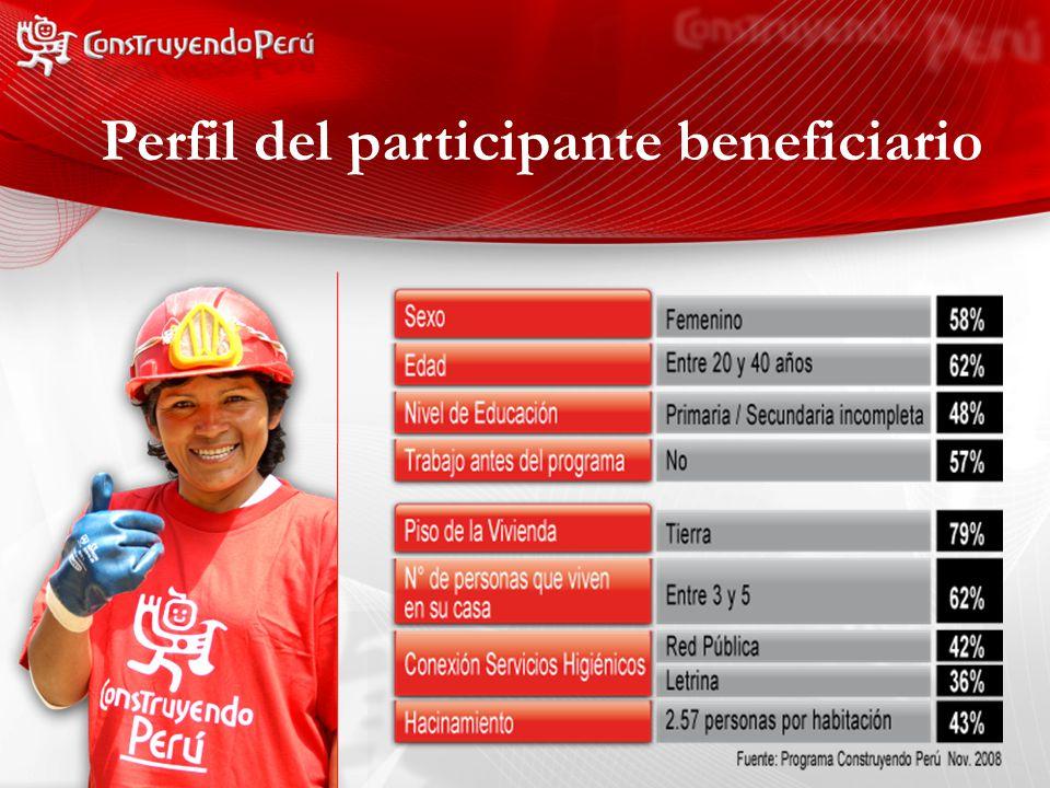 Perfil del participante beneficiario