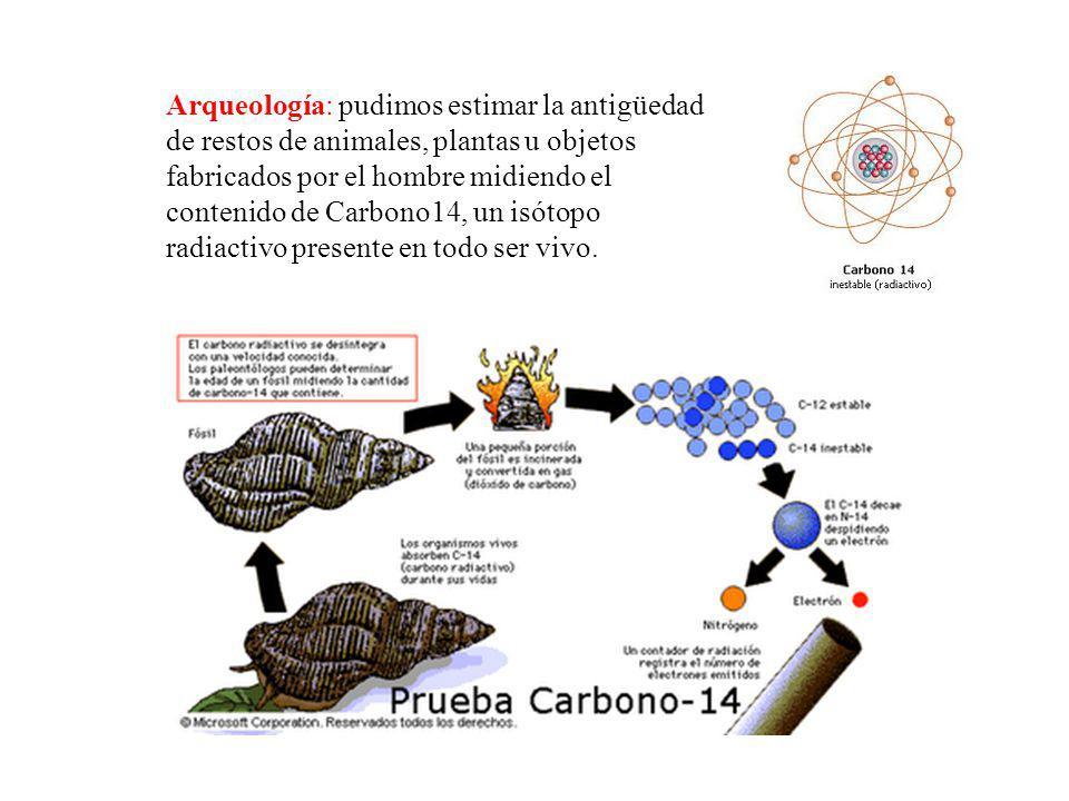 Arqueología: pudimos estimar la antigüedad de restos de animales, plantas u objetos fabricados por el hombre midiendo el contenido de Carbono14, un is