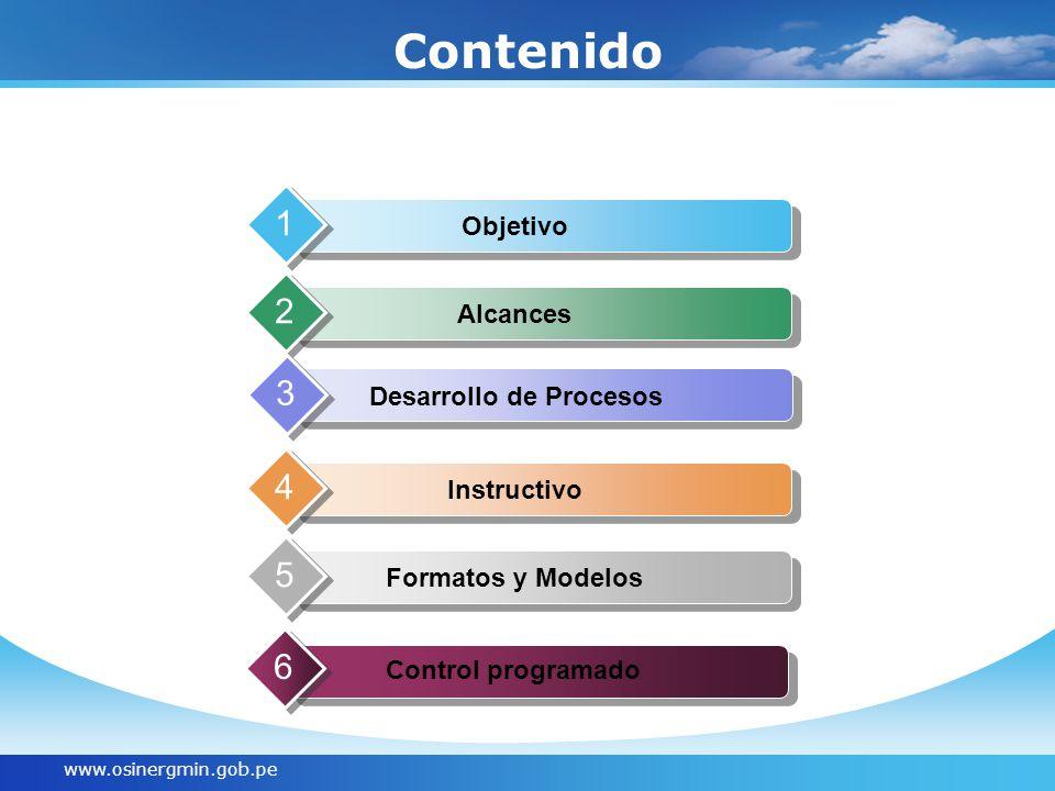 www.osinergmin.gob.pe Contenido Formatos y Modelos 5 Objetivo 1 Alcances 2 Desarrollo de Procesos 3 Instructivo 4 Control programado 6