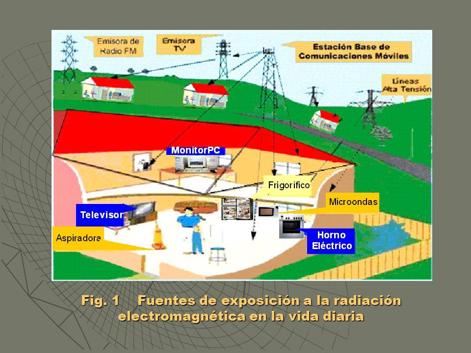Fig. 1 Fuentes de exposición a la radiación electromagnética en la vida diaria