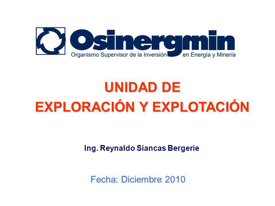 Fecha: Diciembre 2010 UNIDAD DE EXPLORACIÓN Y EXPLOTACIÓN Ing. Reynaldo Siancas Bergerie