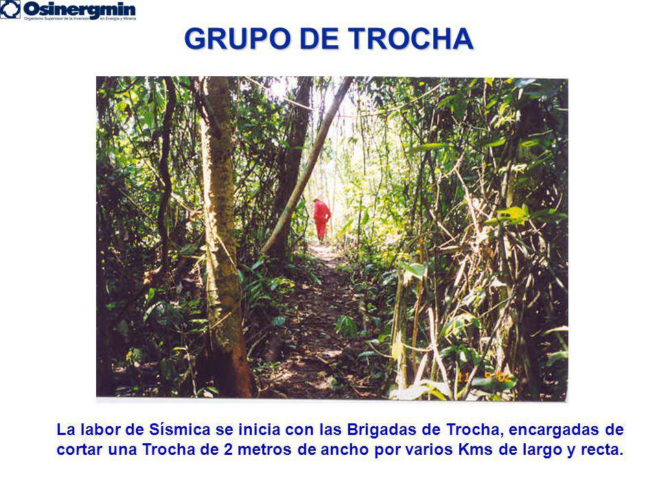 GRUPO DE TROCHA La labor de Sísmica se inicia con las Brigadas de Trocha, encargadas de cortar una Trocha de 2 metros de ancho por varios Kms de largo