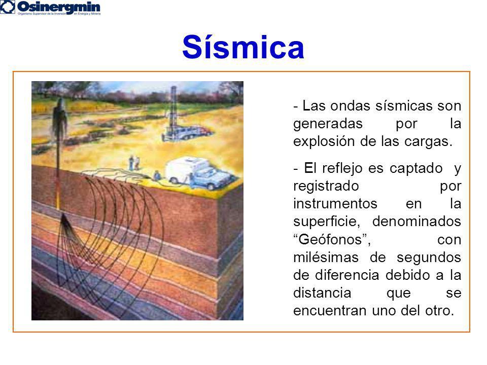 Sísmica - Las ondas sísmicas son generadas por la explosión de las cargas. - El reflejo es captado y registrado por instrumentos en la superficie, den