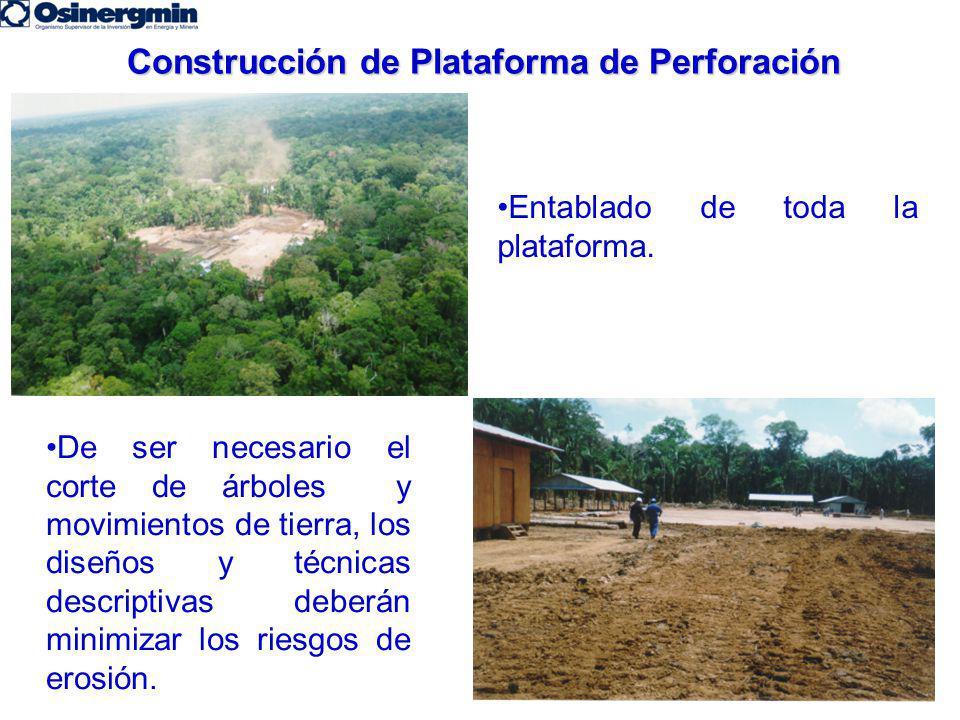 Construcción de Plataforma de Perforación Entablado de toda la plataforma. De ser necesario el corte de árboles y movimientos de tierra, los diseños y