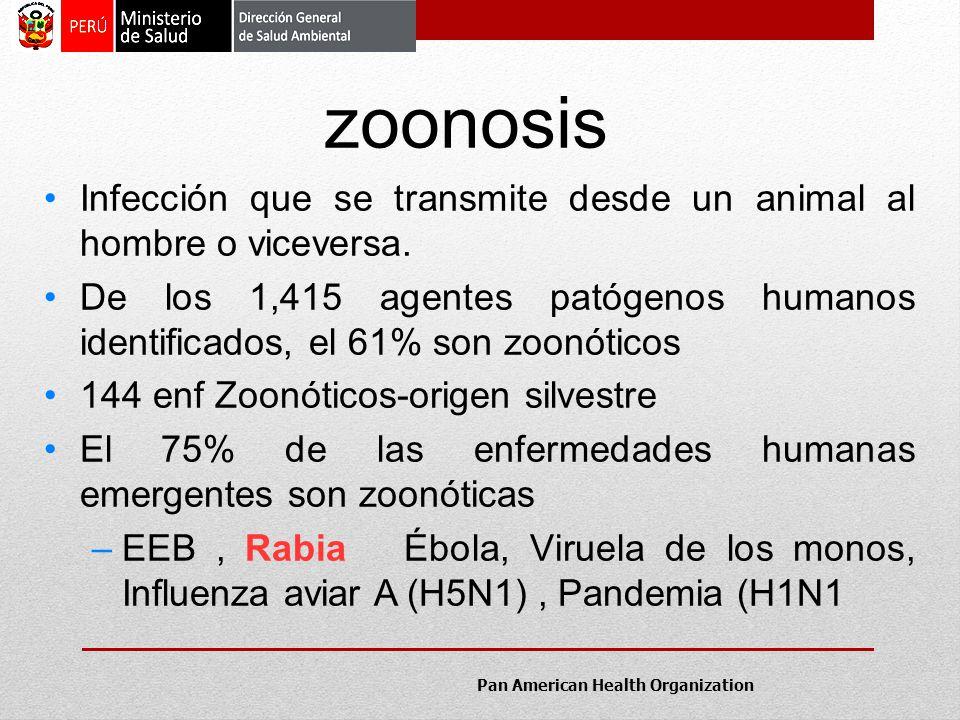 Infección que se transmite desde un animal al hombre o viceversa. De los 1,415 agentes patógenos humanos identificados, el 61% son zoonóticos 144 enf