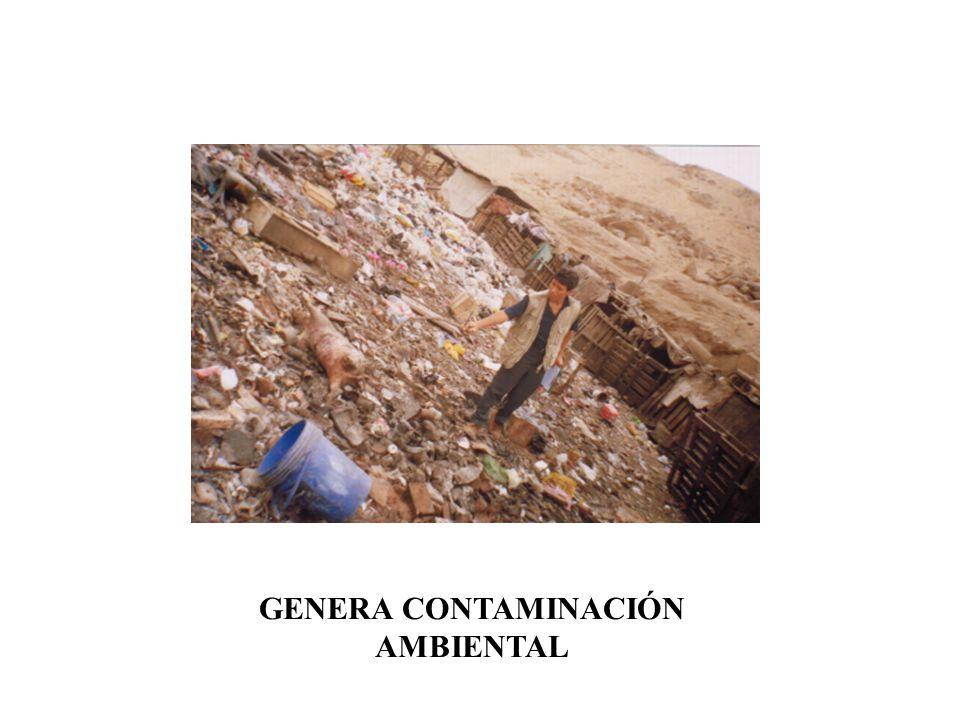 3. EN BASURALES CIENEGUILLA: QUEBRADA SAN BENITO 3,040 SARACOTO,CAJAMARQUILLA, VILLA LETICIA, AYLLU, QUEBRADA HUAYCOLORO 6,570