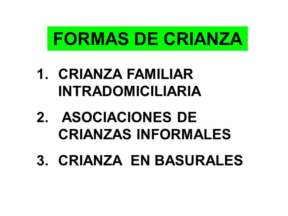 Criadores y población de ganado porcino identificados Fuente: DESA-DISA IV L.E. año 2002