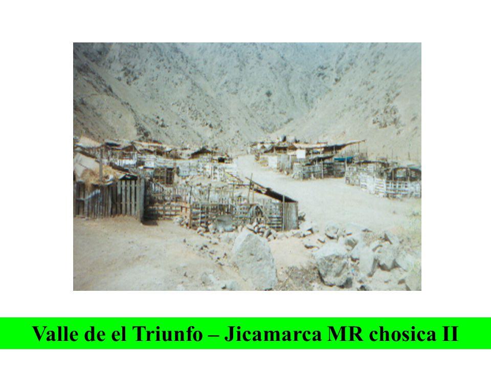 2. EN ASOCIACIONES Saracoto – Cajamarquilla- MR Chosica II