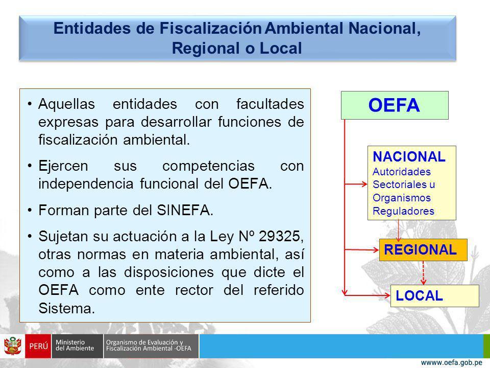 Aquellas entidades con facultades expresas para desarrollar funciones de fiscalización ambiental.