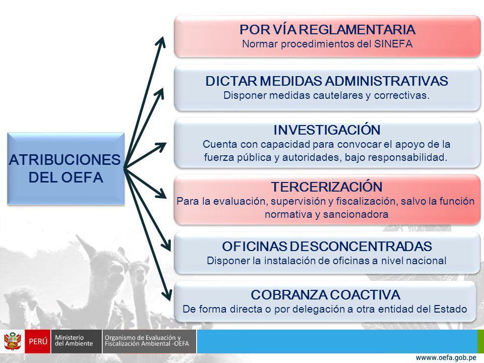 POR VÍA REGLAMENTARIA Normar procedimientos del SINEFA POR VÍA REGLAMENTARIA Normar procedimientos del SINEFA DICTAR MEDIDAS ADMINISTRATIVAS Disponer medidas cautelares y correctivas.