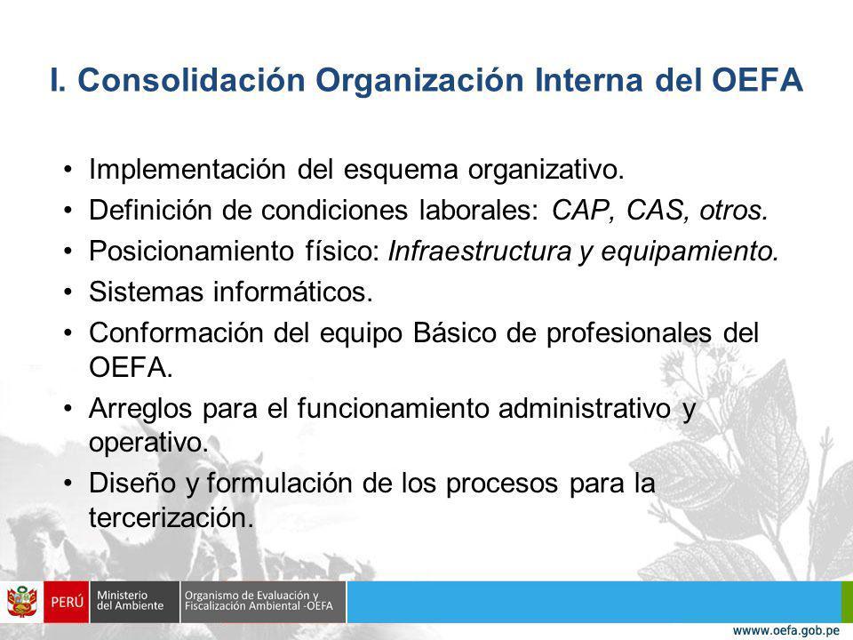 I.Consolidación Organización Interna del OEFA Implementación del esquema organizativo.
