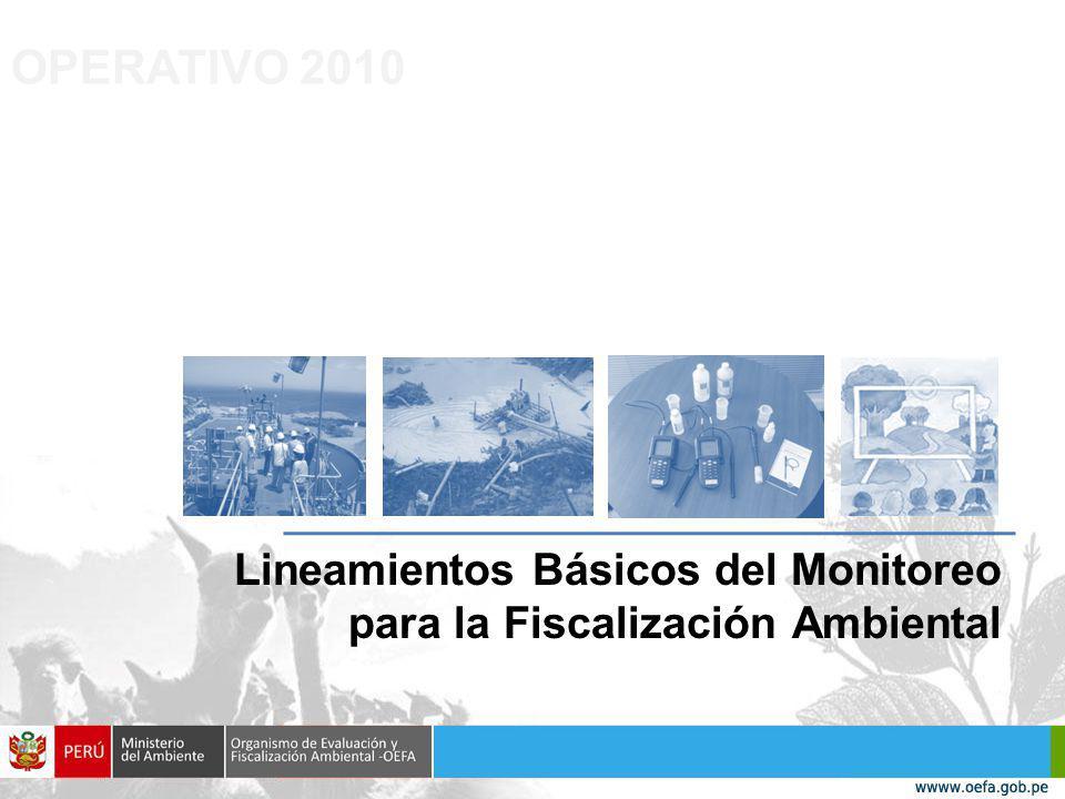 Lineamientos Básicos del Monitoreo para la Fiscalización Ambiental OPERATIVO 2010