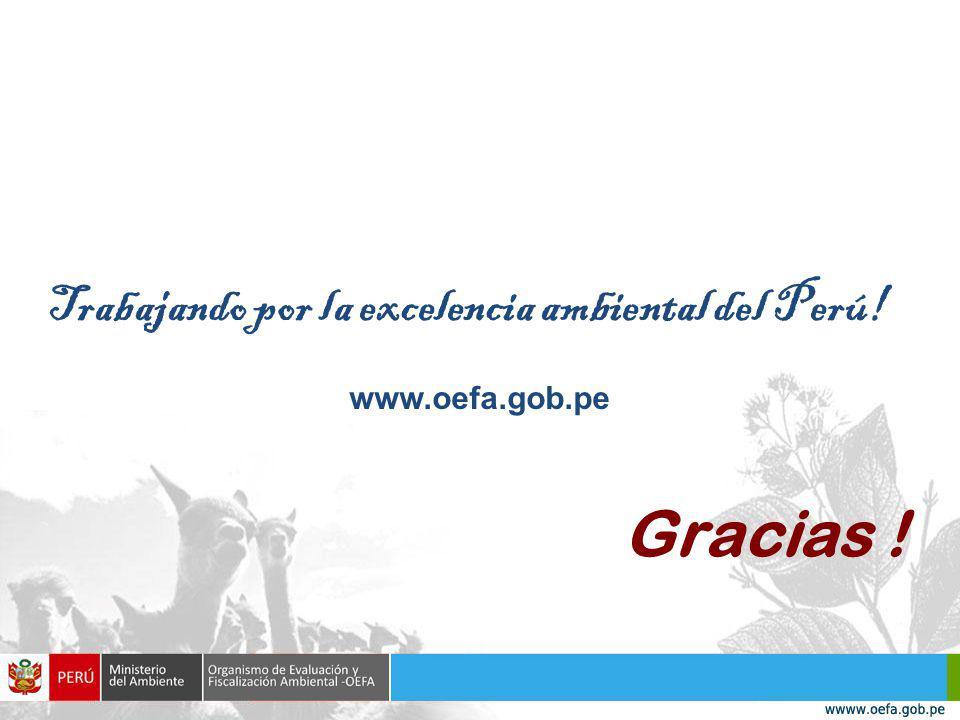 Gracias ! Trabajando por la excelencia ambiental del Perú! www.oefa.gob.pe
