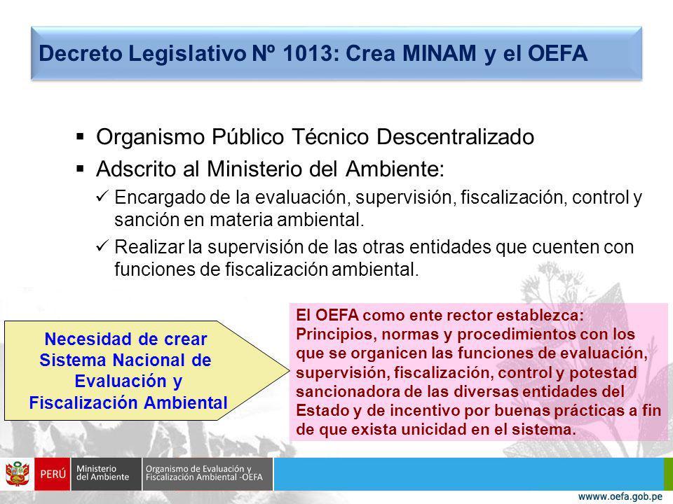 Organismo Público Técnico Descentralizado Adscrito al Ministerio del Ambiente: Encargado de la evaluación, supervisión, fiscalización, control y sanción en materia ambiental.