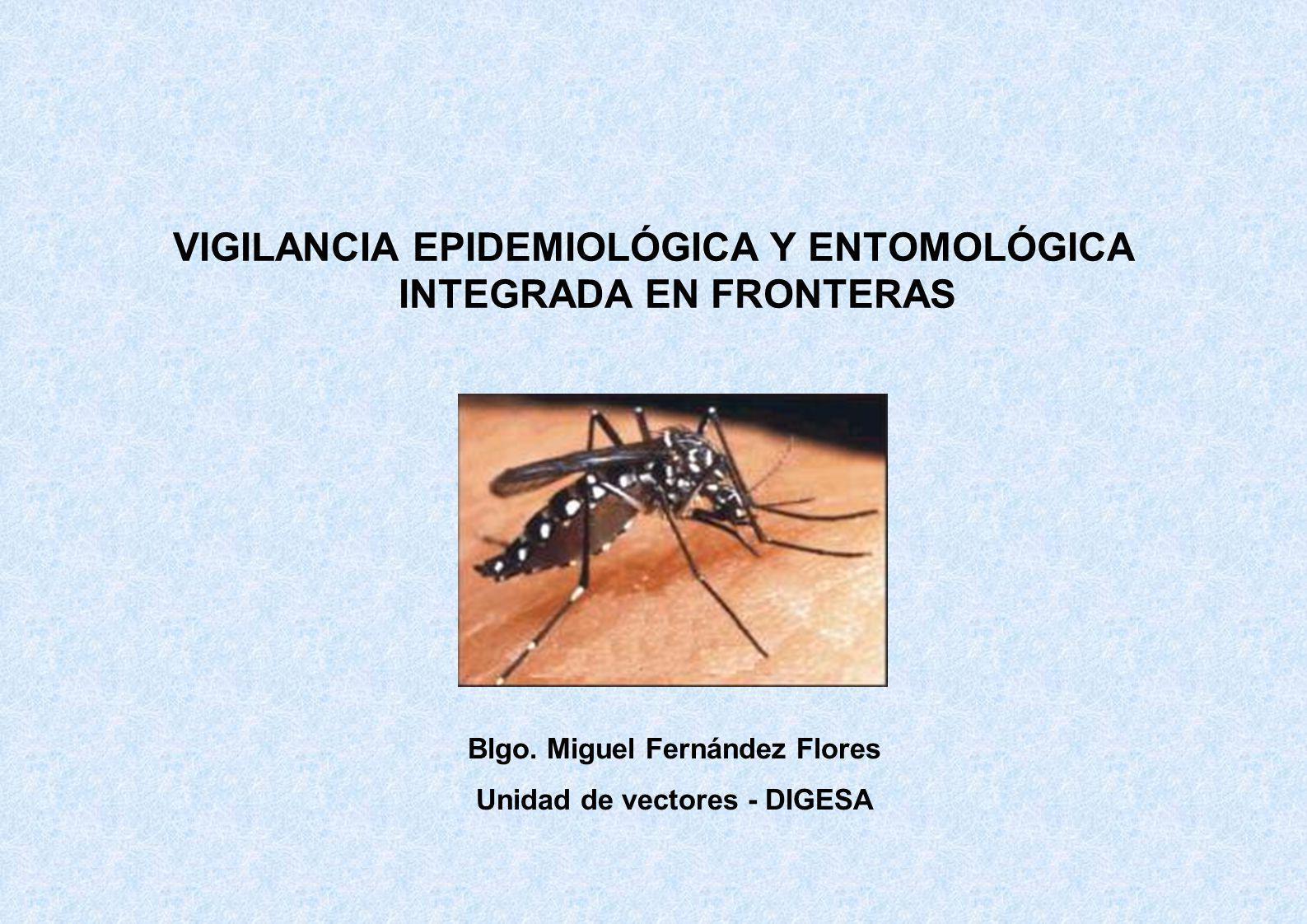 VIGILANCIA EPIDEMIOLÓGICA Y ENTOMOLÓGICA INTEGRADA EN FRONTERAS Blgo. Miguel Fernández Flores Unidad de vectores - DIGESA
