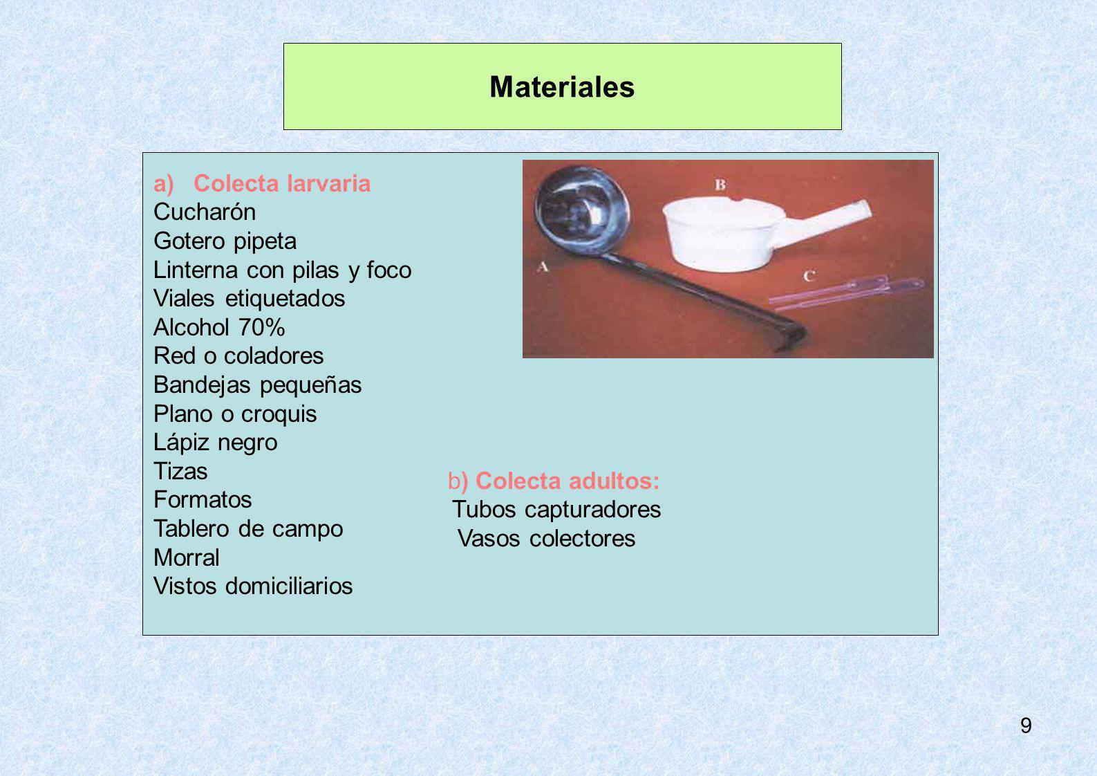 9 Materiales b) Colecta adultos: Tubos capturadores Vasos colectores a)Colecta larvaria Cucharón Gotero pipeta Linterna con pilas y foco Viales etique