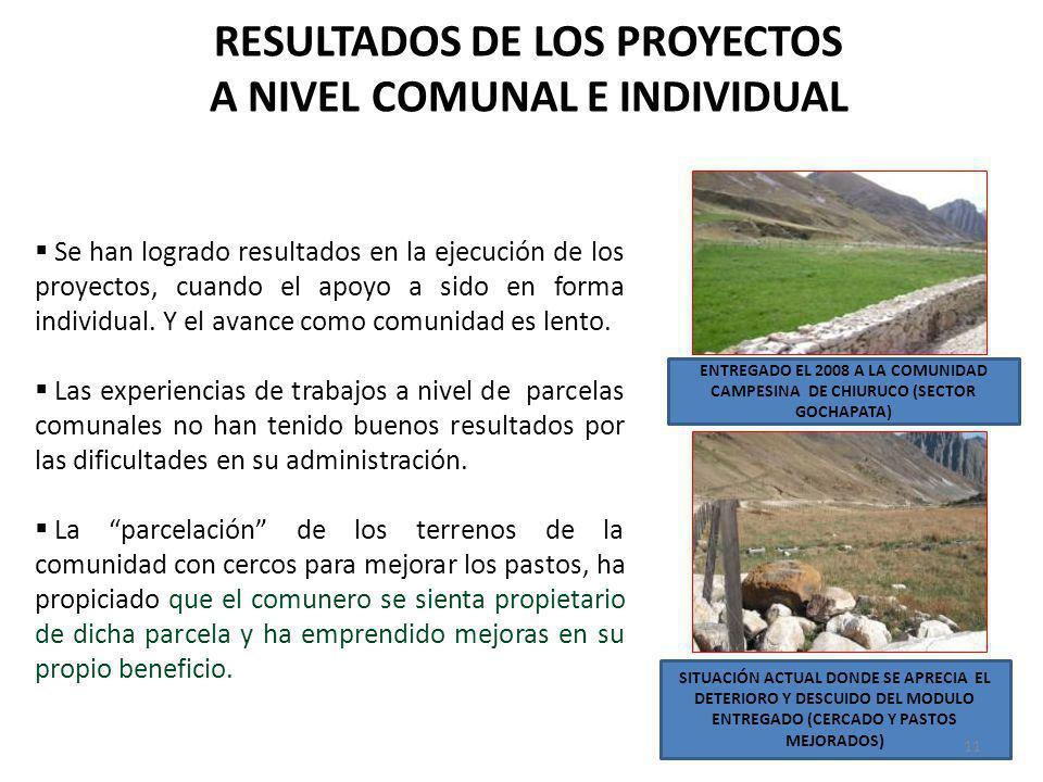 RESULTADOS DE LOS PROYECTOS A NIVEL COMUNAL E INDIVIDUAL Se han logrado resultados en la ejecución de los proyectos, cuando el apoyo a sido en forma i
