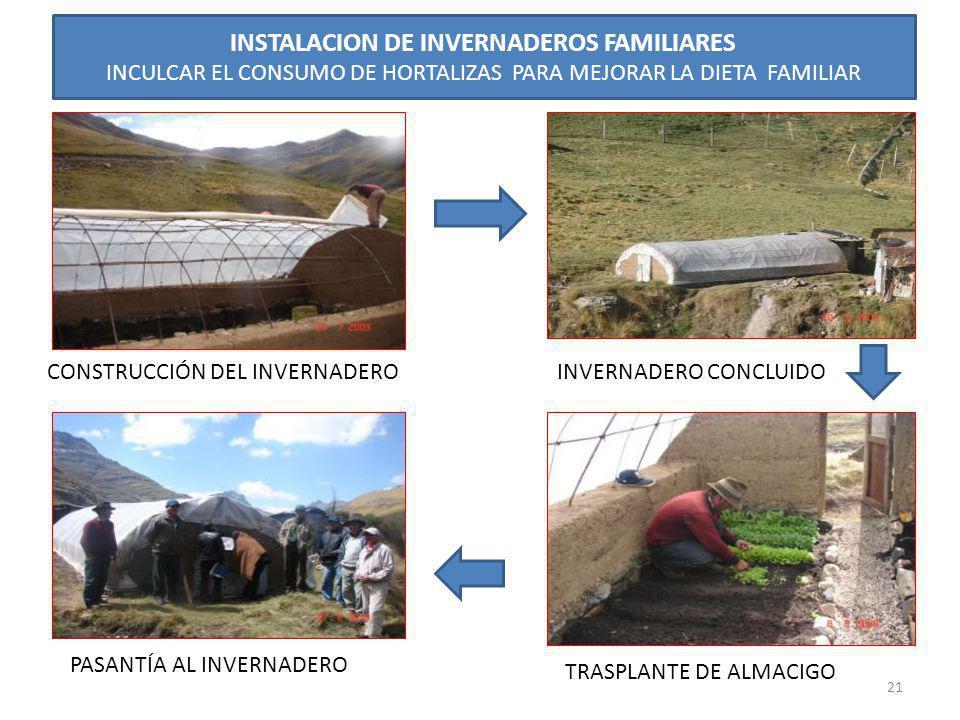 INSTALACION DE INVERNADEROS FAMILIARES INCULCAR EL CONSUMO DE HORTALIZAS PARA MEJORAR LA DIETA FAMILIAR CONSTRUCCIÓN DEL INVERNADEROINVERNADERO CONCLU
