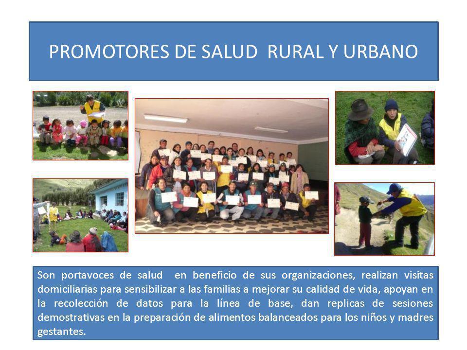 30 PROMOTORES DE SALUD RURAL Y URBANO Son portavoces de salud en beneficio de sus organizaciones, realizan visitas domiciliarias para sensibilizar a l