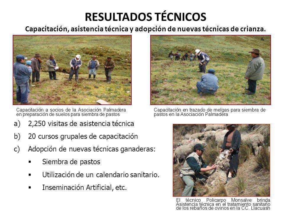 OTROS APOYOS EN LA ZONA DE INFLUENCIA POR RESPONSABILIDAD SOCIAL 48 Apoyo agropecuario Construcción de canal de riego Jahuacocha (10 Km) en la CC.