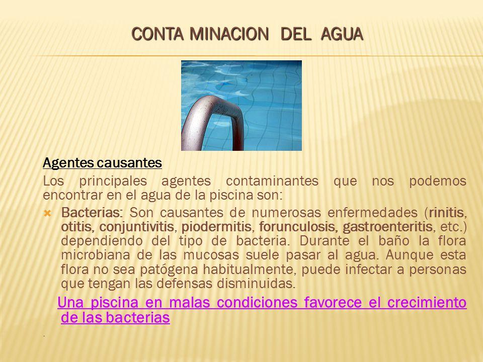Agentes causantes Los principales agentes contaminantes que nos podemos encontrar en el agua de la piscina son: Bacterias: Son causantes de numerosas
