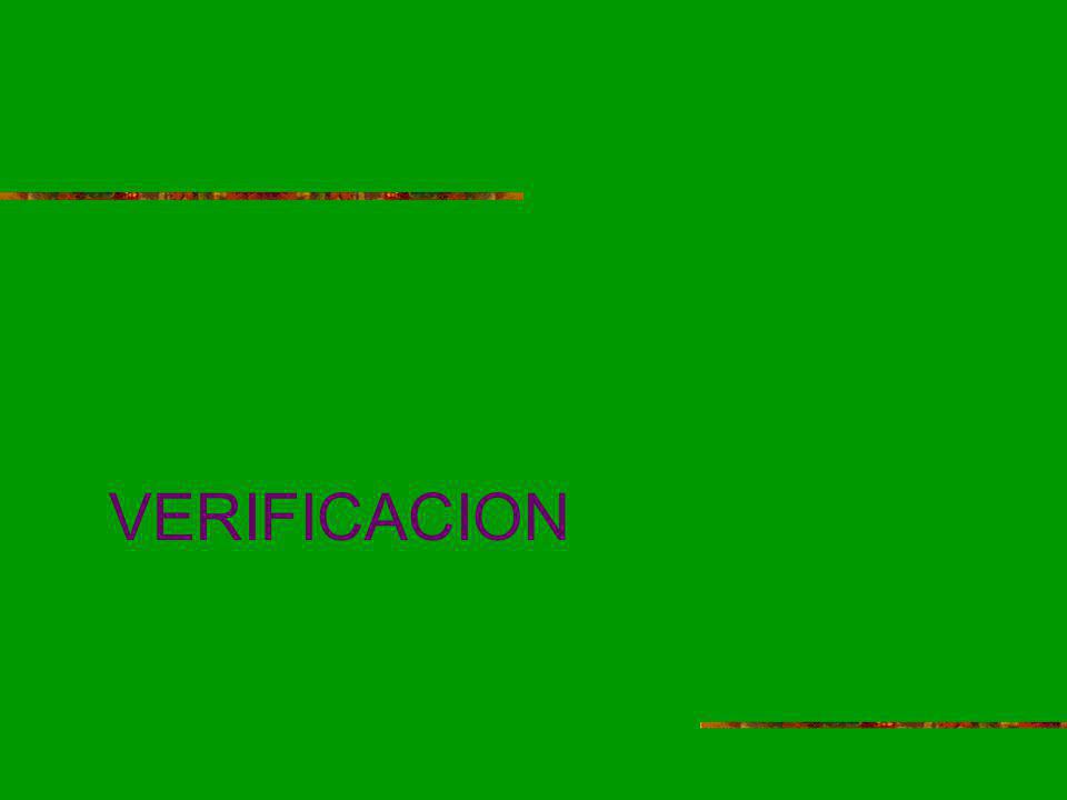 VERIFICACION