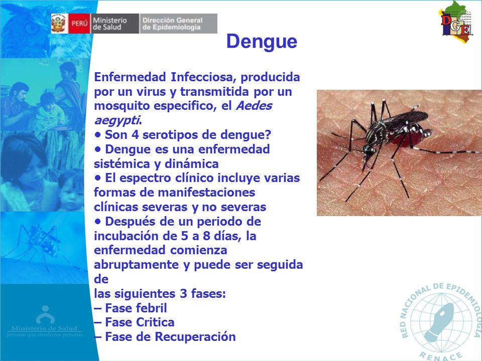 Enfermedad Infecciosa, producida por un virus y transmitida por un mosquito especifico, el Aedes aegypti. Son 4 serotipos de dengue? Dengue es una enf