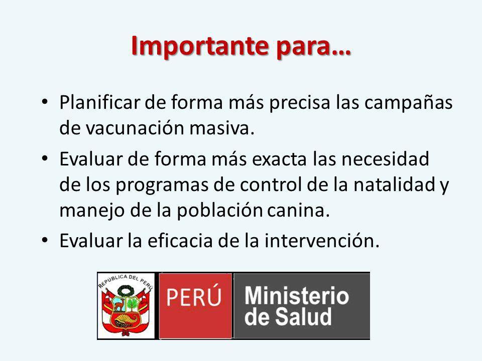 REQUERIMIENTO: Plano Referencial Catastral de la Municipalidad de estudio.