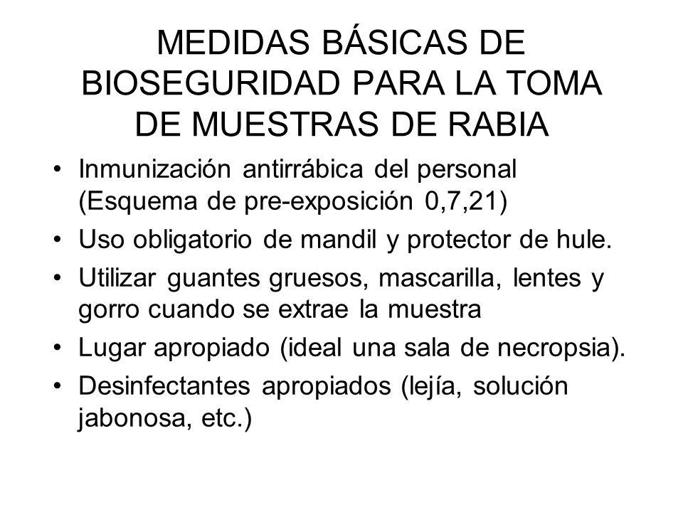 MEDIDAS BÁSICAS DE BIOSEGURIDAD PARA LA TOMA DE MUESTRAS DE RABIA Inmunización antirrábica del personal (Esquema de pre-exposición 0,7,21) Uso obligat