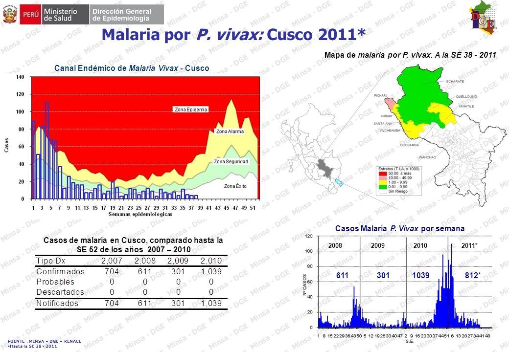 FUENTE : MINSA – DGE – RENACE Hasta la SE 38 - 2011 2008 DENGUE: Departamento de Loreto 2011* Curva de casos de Dengue.