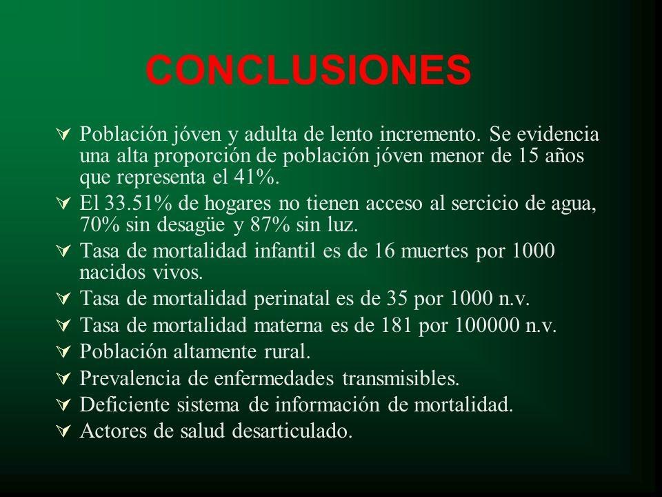 CONCLUSIONES Población jóven y adulta de lento incremento.