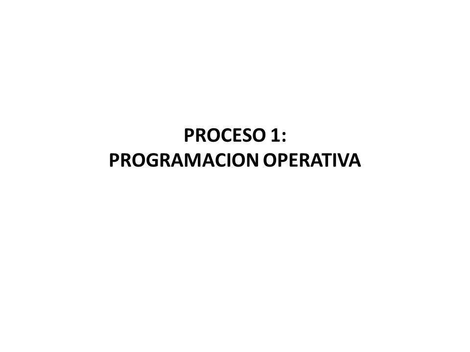 PROCESO 1: PROGRAMACION OPERATIVA