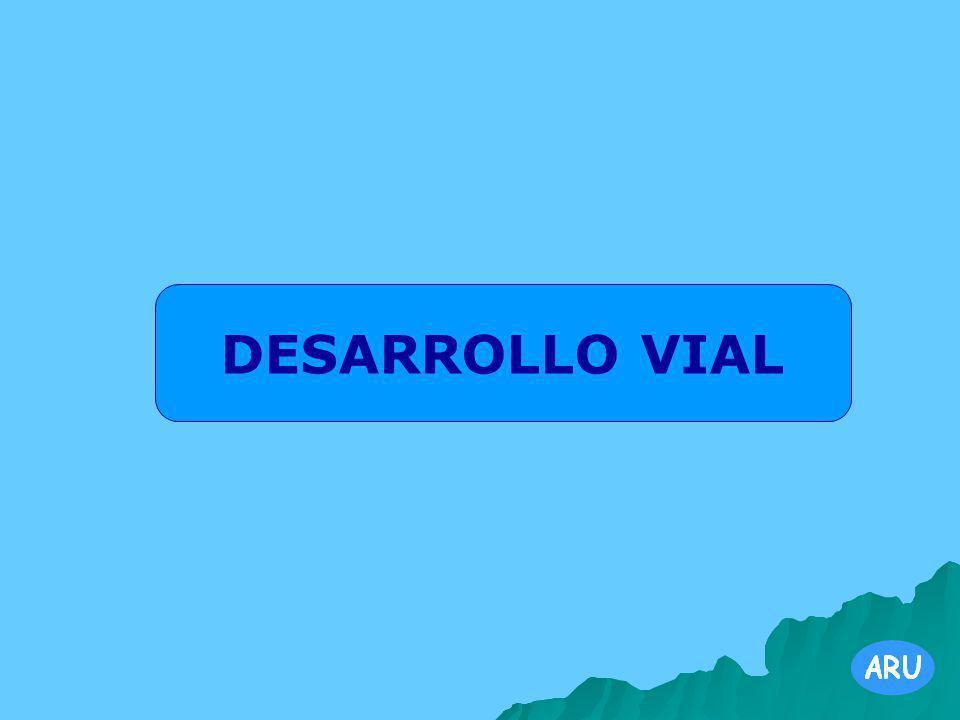 DESARROLLO VIAL