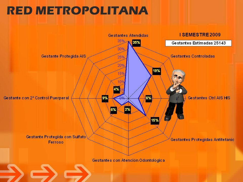 RED LIMA METROPOLITANA I SEMESTRE 2008 - 2009