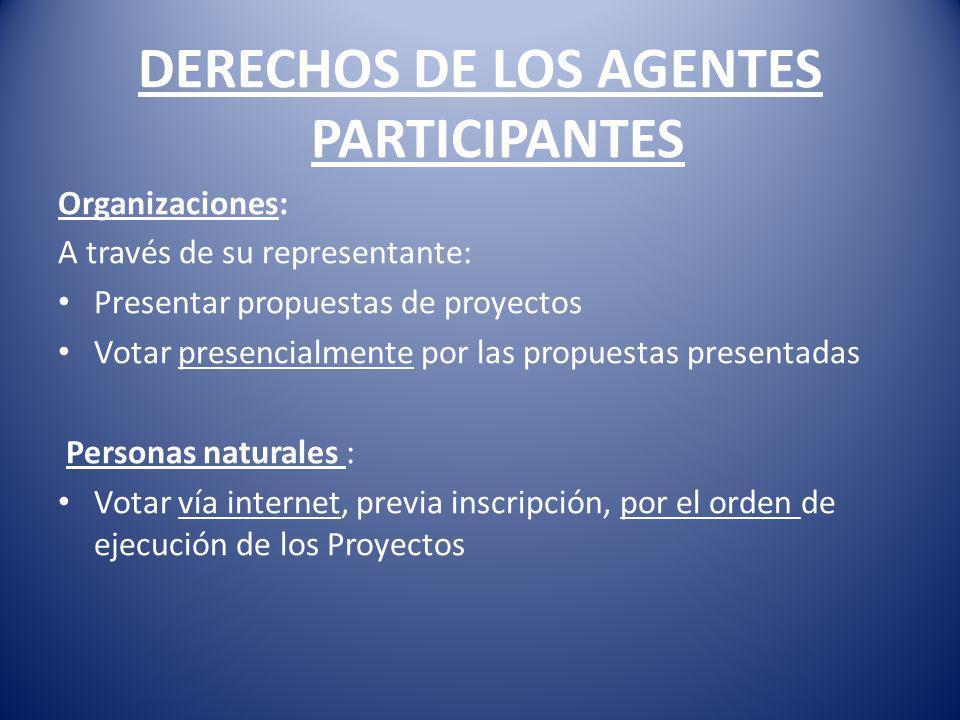 DERECHOS DE LOS AGENTES PARTICIPANTES Organizaciones: A través de su representante: Presentar propuestas de proyectos Votar presencialmente por las pr