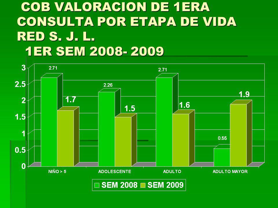 COB VALORACION DE 1ERA CONSULTA POR ETAPA DE VIDA RED S. J. L. 1ER SEM 2008- 2009 COB VALORACION DE 1ERA CONSULTA POR ETAPA DE VIDA RED S. J. L. 1ER S