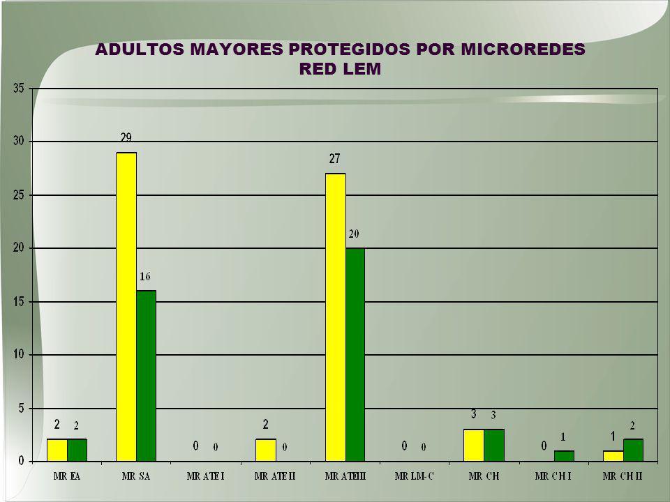 ADULTOS MAYORES PROTEGIDOS POR MICROREDES RED LEM