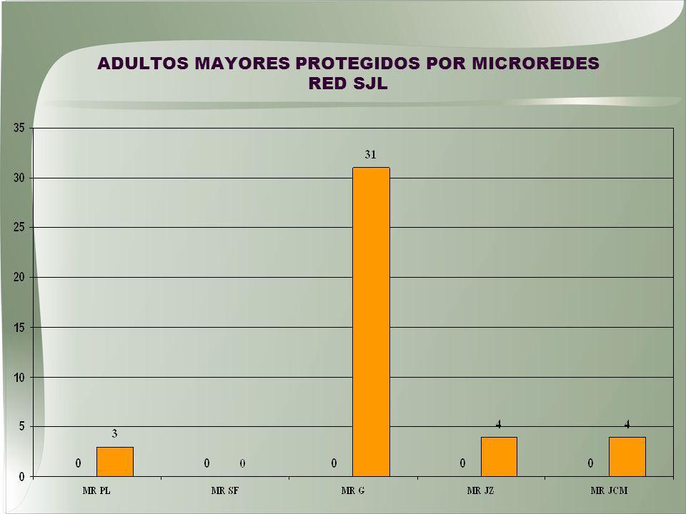 ADULTOS MAYORES PROTEGIDOS POR MICROREDES RED SJL