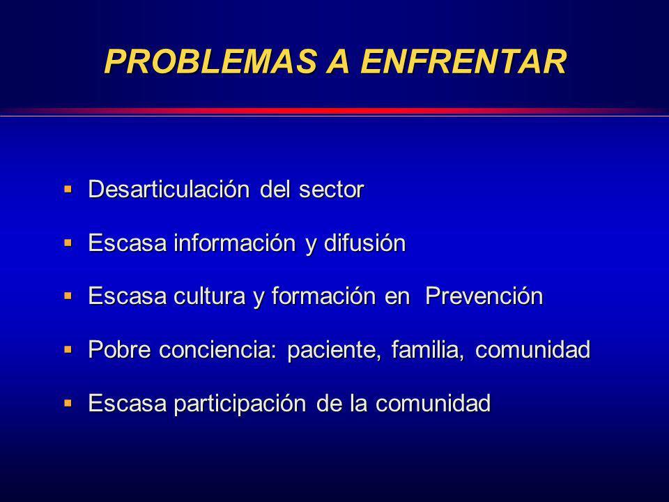 PROBLEMAS A ENFRENTAR Desarticulación del sector Desarticulación del sector Escasa información y difusión Escasa información y difusión Escasa cultura
