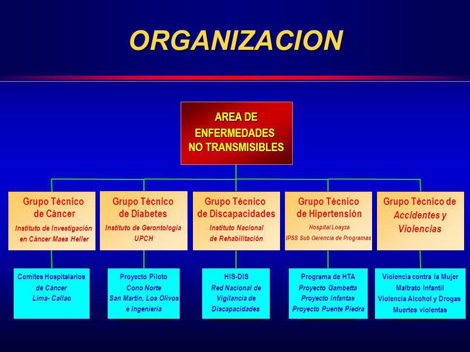 ORGANIZACION Comites Hospitalarios de Cáncer Lima- Callao Grupo Técnico de Cáncer Instituto de Investigación en Cáncer Maes Heller Proyecto Piloto Con