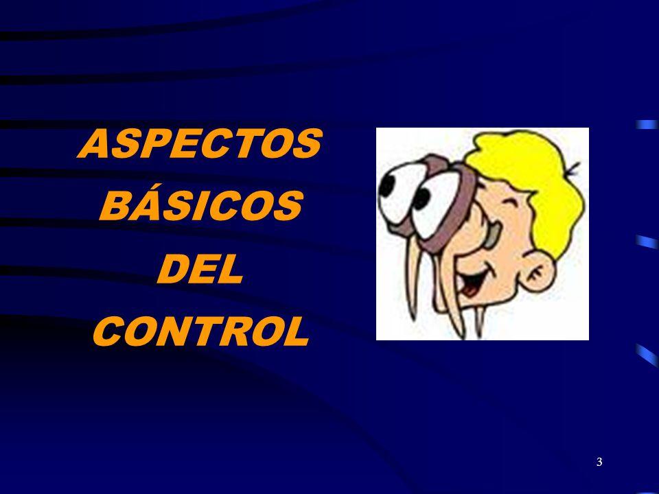 3 ASPECTOS BÁSICOS DEL CONTROL