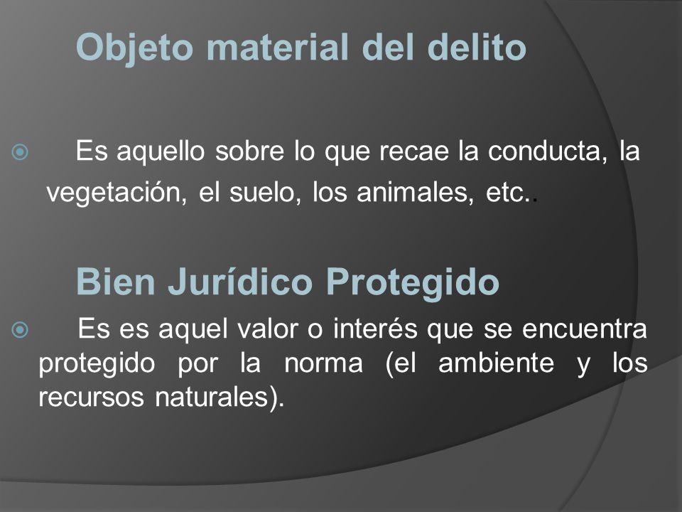 Objeto material del delito Es aquello sobre lo que recae la conducta, la vegetación, el suelo, los animales, etc.. Bien Jurídico Protegido Es es aquel