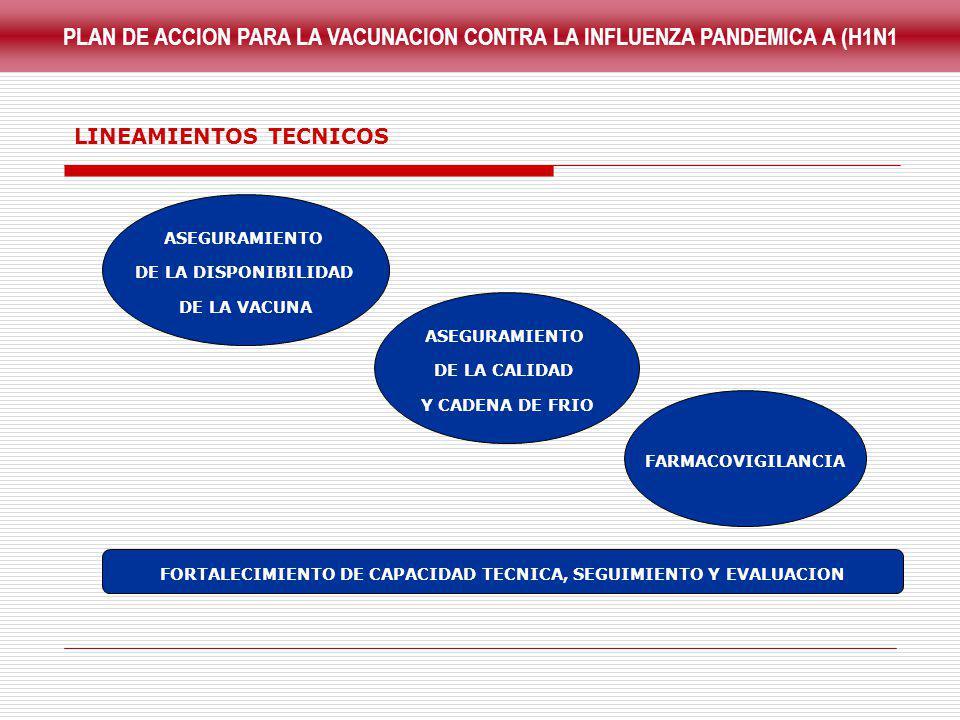 PLAN DE ACCION PARA LA VACUNACION CONTRA LA INFLUENZA PANDEMICA A (H1N1 ASEGURAMIENTO DE LA DISPONIBILIDAD DE LA VACUNA ASEGURAMIENTO DE LA CALIDAD Y