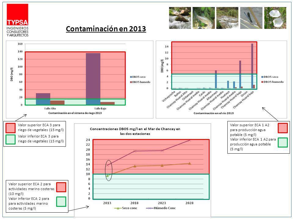Contaminación en 2013 Valor superior ECA 3 para riego de vegetales (15 mg/l) Valor inferior ECA 3 para riego de vegetales (15 mg/l) Valor superior ECA