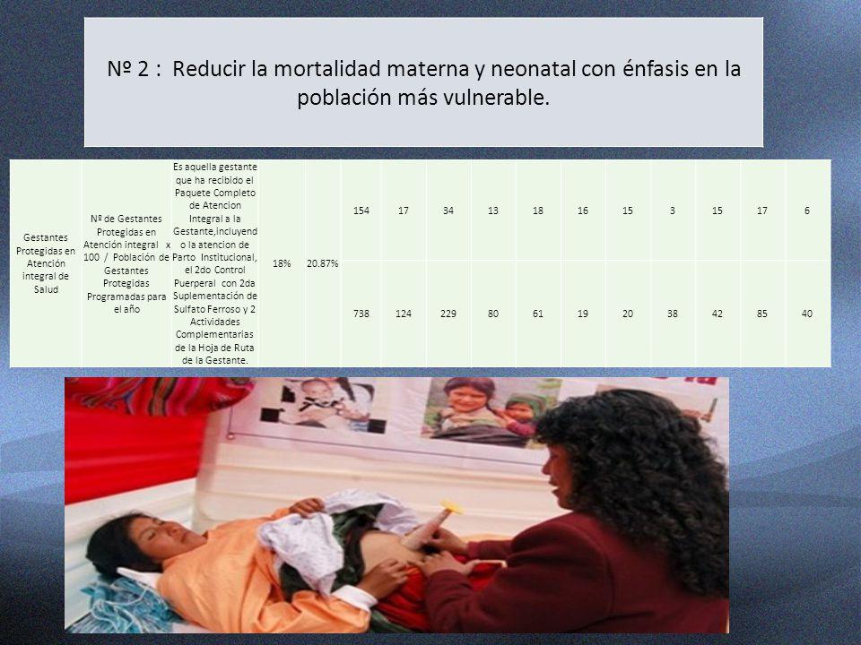 Nº 2 : Reducir la mortalidad materna y neonatal con énfasis en la población más vulnerable. Gestantes Protegidas en Atención integral de Salud Nº de G